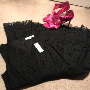 Loft Lace Dress NWT! Size 6